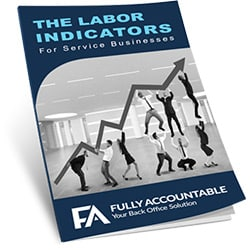 The Labor Indicators cover image